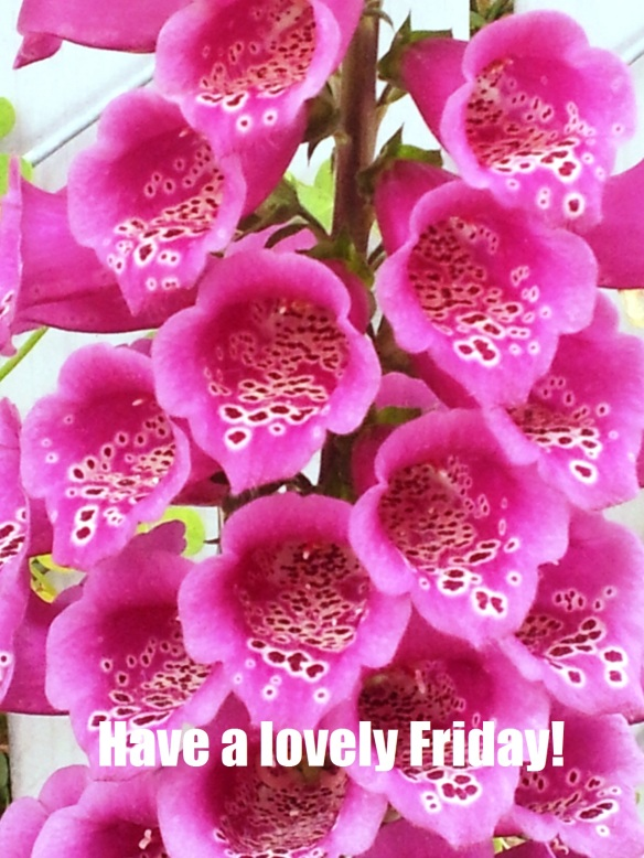 Have a Lovely Friday!