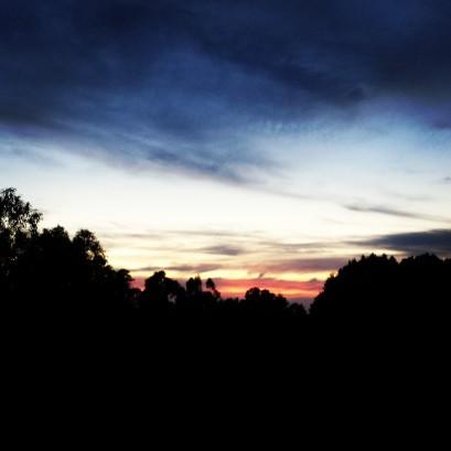 Twilight Trail Run