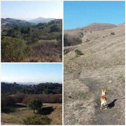 sunday hike2
