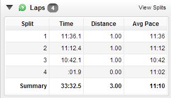 progression 3 miler